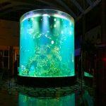 china vlastní levné super velké kolo pmma sklo akvária čiré válec akrylové nádrže pro ryby
