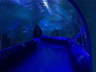 180 nebo 90 stupňových akrylových panelů pro akvarijní tunely