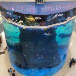 od 20 mm do 500 mm silných akrylových panelů pro moderní velké ryby