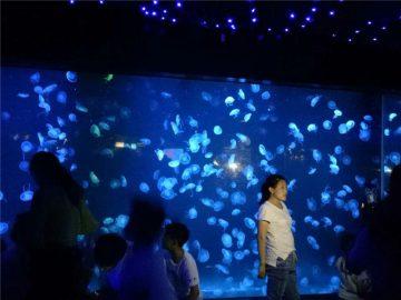 2018 Akrylové medúzy akvarijní tankové sklo