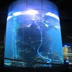 čistý akrylový válec velká nádrž na akvárium nebo oceán park