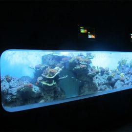 Umělohmotný akrylový cylindrický průhledný akvárium pro ryby / pohledové okno