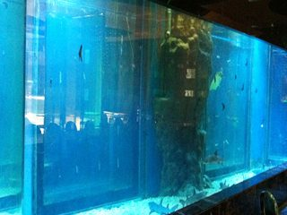 Tlustý akrylový okenní bazénový plechový typ plexiskla