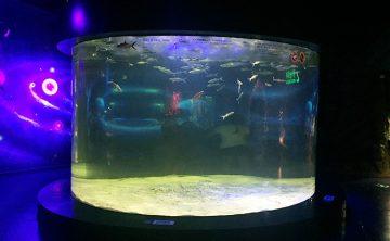 Akrylová nádrž na ryby