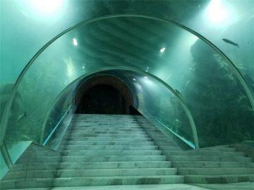 Cena akvária akrylového akvária