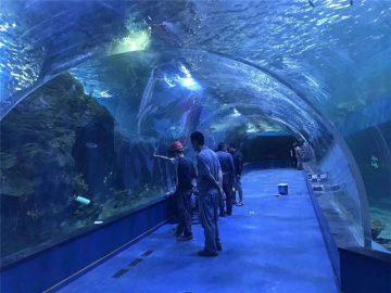 Vlastní plexisklo akrylové tunelové akvárium