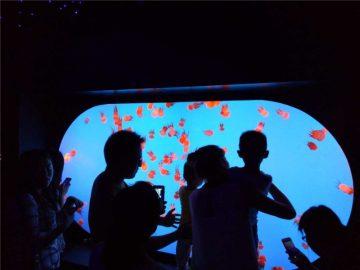 Zakázkový rozměr tvaru odrůdy Jellyfish Tank