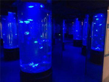 akrylové medúzy akvarijní tankové sklo